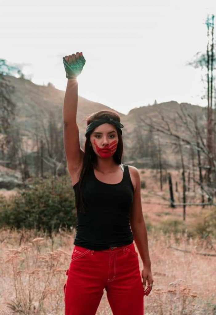 A beautiful Native American woman stands with her fist raised proudly and red face paint on.