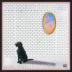 """""""Corduroy"""" is the latest album from Seattle rapper Sam Lachow. On its cover, a black dog sits in front of a white brick wall with a mirror on it."""