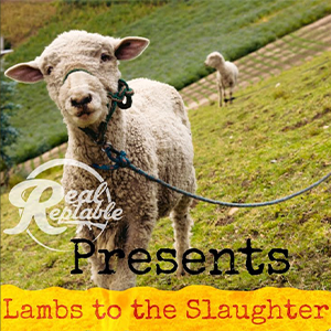 """Cover of Doughkain and Josh Rizeberg's single """"Lambs to the Slaughter"""" features a lamb on a leash walking alongside a hillside."""