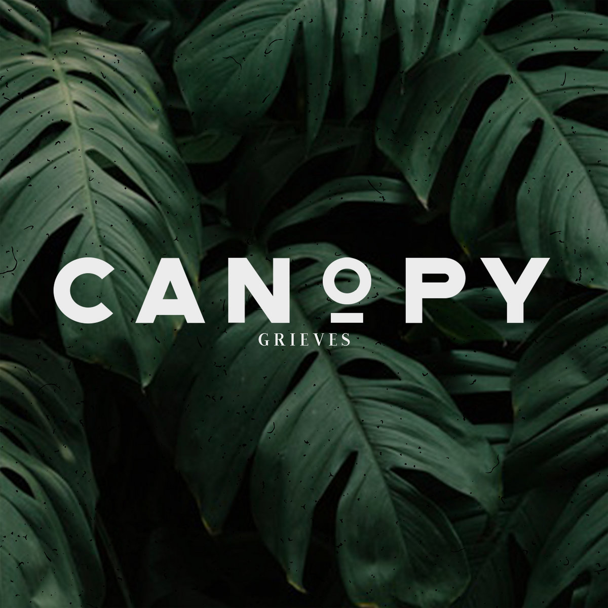 """Cover for Grieves album """"Canopy"""" is a simple picture or leaves from a jungle plant."""